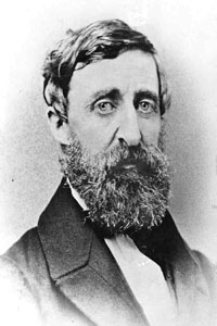 Transcendentalist Author Influenced Thinking About Life and Society